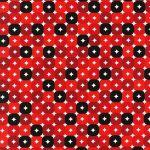 Candy Dot –Licorice