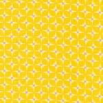 Hop Dot –Tangerine