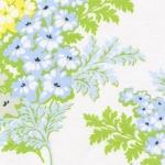 Picnic Bouquet –Sky