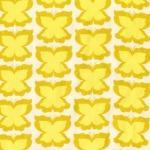 Happy Butterfly –Maize