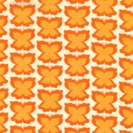 Happy Butterfly –Pumpkin