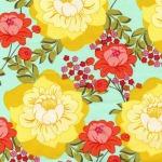 Splashy Rose –Garden