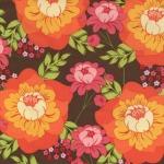 Splashy Rose –Persimmon