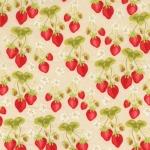 Strawberry Fields –Cream