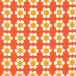 Daisies – Tangerine