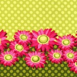 Double Border Daisy –Lime
