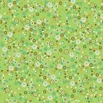 Hoot Dot –Green