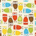Owls – Bermuda