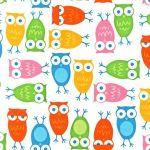 Owls – White