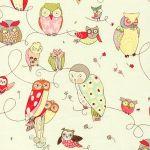 Spotted Owl –Natural
