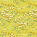 Flower Fields –Sunglow