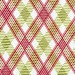 Picnic Plaid –Berry